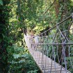 bridge of belize