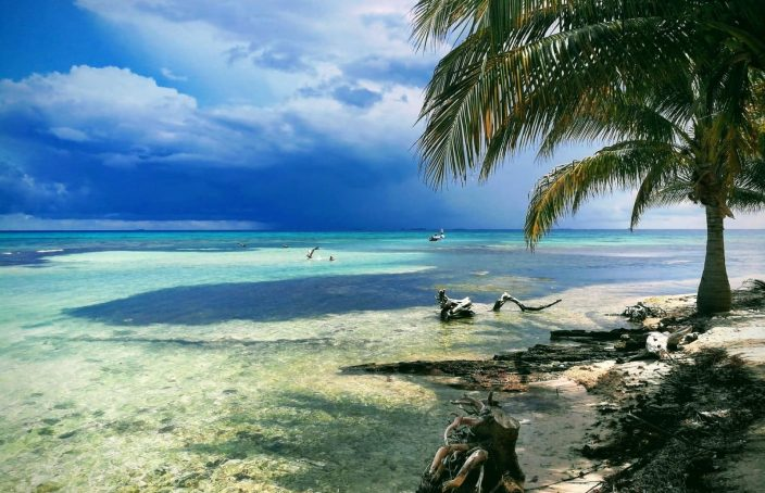 mystically beautiful Moho caye belize real life recess