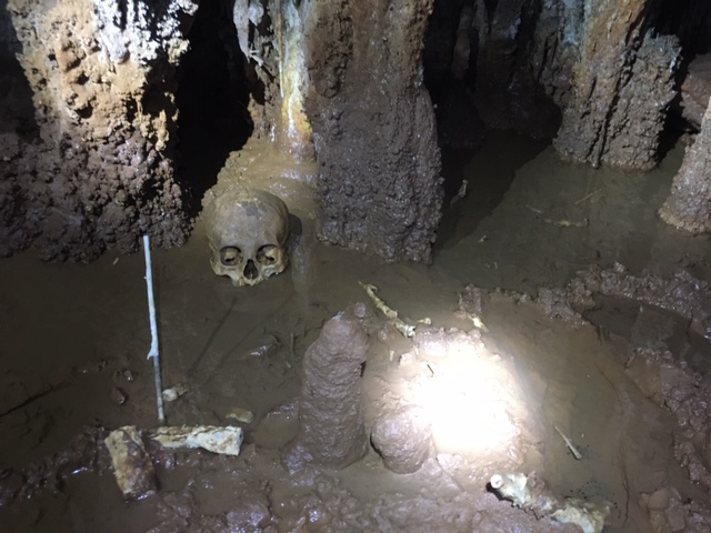 bones and a skull in Sleeping Giant ceremonial cave hint of history of human sacrifice