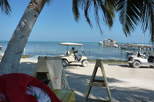 Caye Caulker cart- Real Life Recess