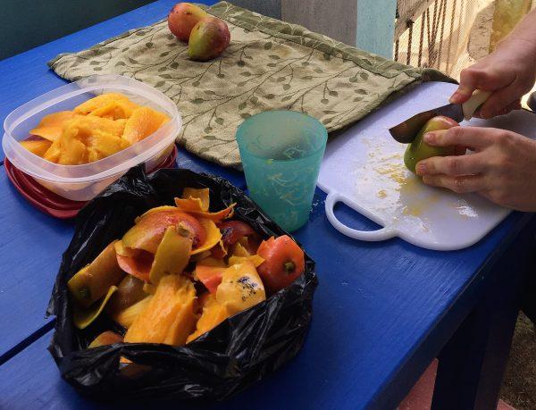 Cutting Mangos Real Life Recess