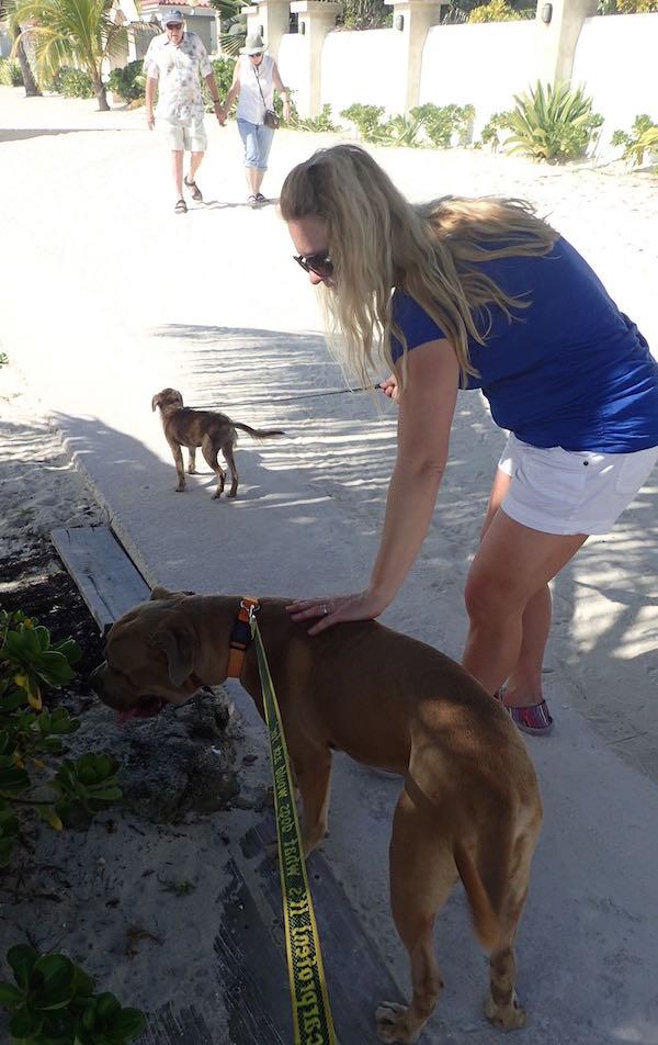 Sage Humane Society Ambergris Caye- Real Life Recess