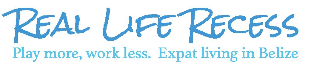 Real Life Recess Header