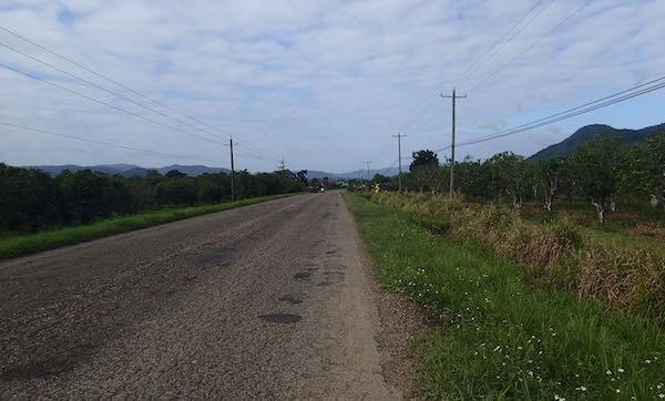 Hummingbird Highway- Real Life Recess