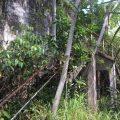 lynam prison stann creek belize