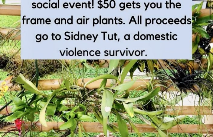 local fundraising event for domestic violence in belize
