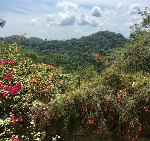 natural beauty of Belize's most southern district