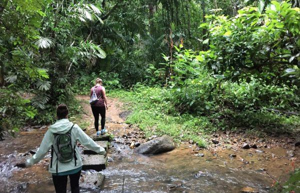 Hiking Cockscomb Trail Real Life Recess