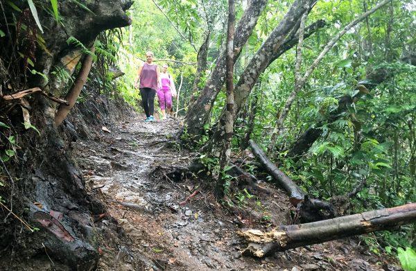 Cockscomb Hiking Trails