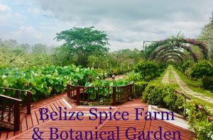 belize spice farm and botanical garden