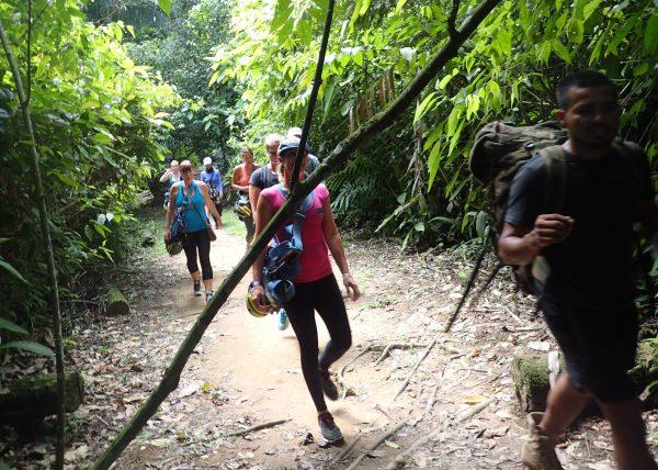 Hiking through the jungle- Real Life Recess