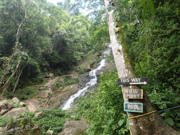 View up the falls- Real Life Recess
