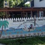 Saga Humane Society Ambergris Caye- Real Life Recess
