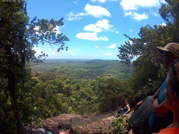 View of Belize Jungle- Real Life Recess